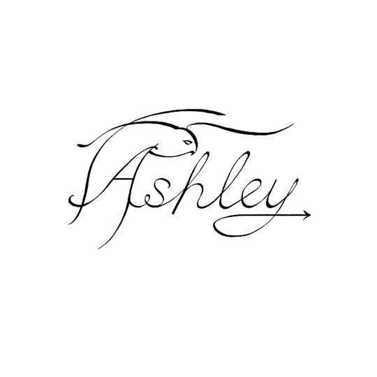 ashleyowl