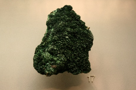 spikey green