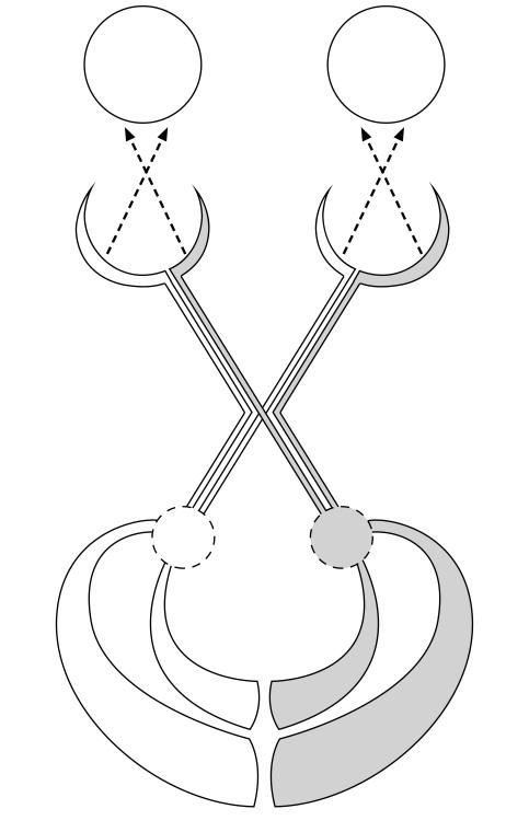 Vision Diagram