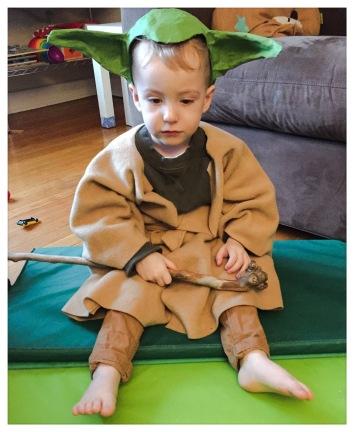 needs a nap, Yoda does