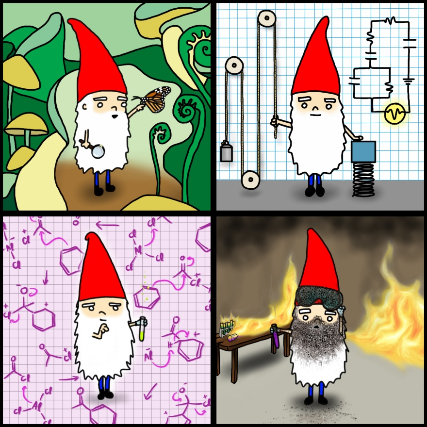 Science Gnome